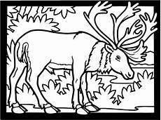 malvorlagen tiere gratis bild elch ausmalbild malvorlage tiere