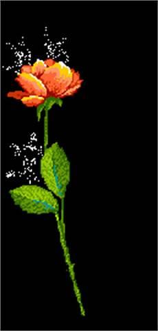 Blumen Malvorlagen Kostenlos Xyz Blumen Animierte Bilder Gifs Animationen Cliparts