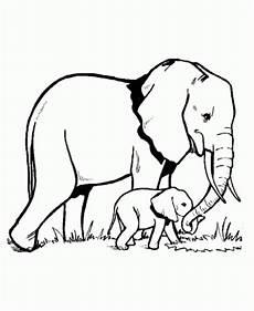 Malvorlagen Elefant Malen Elefant Ausmalbilder Ausmalbilder Bilder Zum Malen