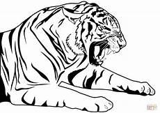 ausmalbild tiger ausmalbilder kostenlos zum ausdrucken
