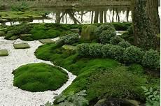 japanische bodendecker pflanzen f 252 r nassen boden