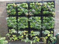potager vertical balcon un potager pour votre balcon comment cr 233 er un potager