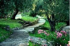 giardini in fiore foto giardino dell iris l orto botanico dedicato al fiore
