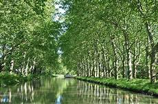 File Canal Du Midi Carcassonne Languedoc Roussillon