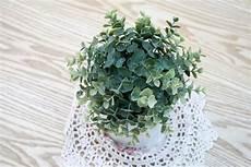 pflanzen fürs schlafzimmer feng shui feng shui schlafzimmer einrichten hol dir harmonie und