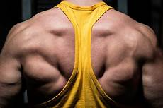 adding muscle at any age defying genetics and designing the muscle building workout