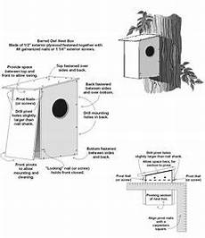 barred owl house plans owl nesting box on pinterest nest box owl box and owl house