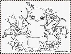 kumpulan gambar hewan untuk anak anak tk paud belajar