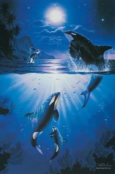 Malvorlagen Unterwasser Tiere Lustig Absolutely Gorgeous Unterwasser Kunst Naturbilder Bilder