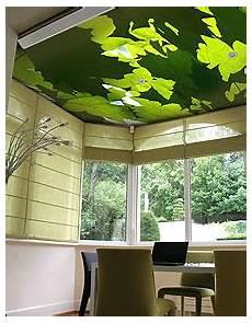 Plafond Tendu Alyos Plafond De Feuilles Plafond Tendu Imprim 233 Alyos