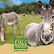 Gutschein Zoo Leipzig - veranstaltung zoo leipzig frankfurt ticket rheinmain