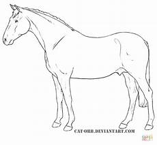 Malvorlage Pferd Umriss Appaloosa Drawing At Getdrawings Free