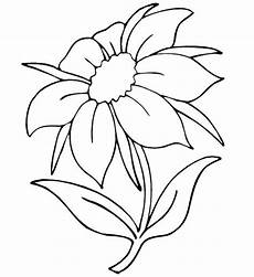 Ausmalbilder Sommerblumen Summer Flowers Coloring Page