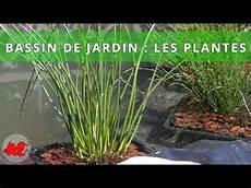 bassin de jardin plantes aquatiques