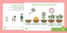 what do you need to grow worksheet teacher made