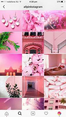 The Feed With Merel How To Plan Grow Your Pink