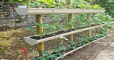 jardin potager sur terrasse un potager dans votre jardin moving tahiti