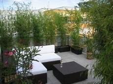 Pflanzen Als Nat 252 Rlicher Sichtschutz Auf Dem Balkon