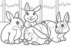 bunny coloring pages animal coloring pages free