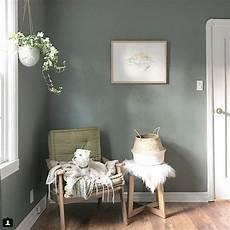 village green behr decor green wall color home decor