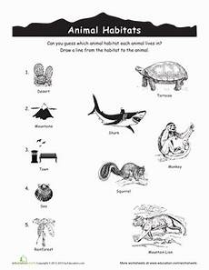 animals and their habitat worksheets for kindergarten 14167 animal habitats match up worksheet education
