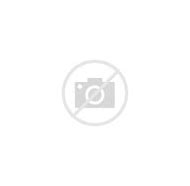 Umbrella with Butterflies