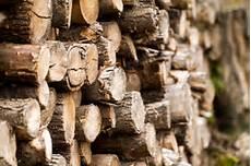 anleitungen im bereich garten zum thema brennholz