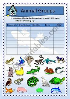 science worksheets on classification 12333 science animals classification updated w key esl worksheet by malyn