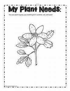 needs of plants worksheets kindergarten 13579 plant needs worksheet worksheets