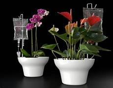 pflanzen während urlaub bewässern tipps wie sie w 228 hrend des sommerurlaubs die pflanzen