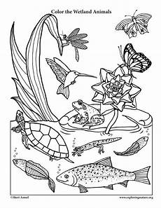coloring pages of nature and animals 16380 a wetland coloring page for naturalists with a smiling animal twist desert
