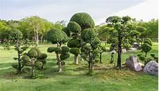 jardin zen conseils d 233 co astuces id 233 es pratiques