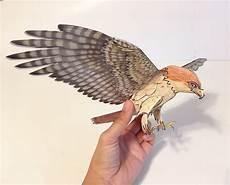 how to make a 3d bird model hawk papercraft 3d bird birds paper crafts paper models