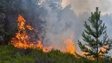 Waldbrand Bei Berlin - evakuierungen sind m 246 glich waldbrand bei potsdam bedroht