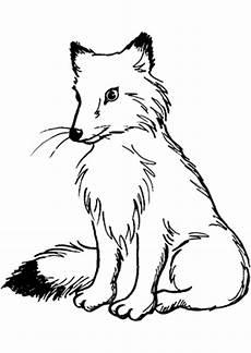 Ausmalbilder Tiere Fuchs Ausmalbild Fuchs 2 Zum Ausdrucken