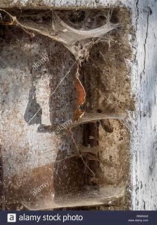 extrem viel staub im zimmer spinnweben in einem dreckigen mauer ecke mit viel staub stockfoto bild 227988432 alamy