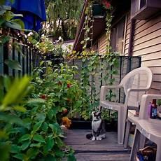 Balkon Ideen Pflanzen - 33 small balcony designs and beautiful ideas for