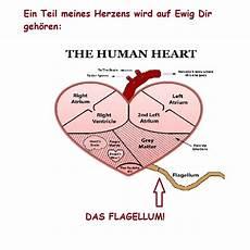 Anti Valentinstag Sprüche - irrsinn anti valentinstag gru 223 karten