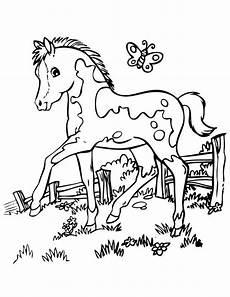 Ausmalbild Pferde Fohlen Ausmalbild Kleine Fohlen Mit Einem Schmetterling