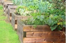 hochbeete selber bauen und bepflanzen peace of community 187 raised beds