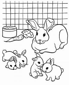 get this printable rabbit coloring pages 4g45s