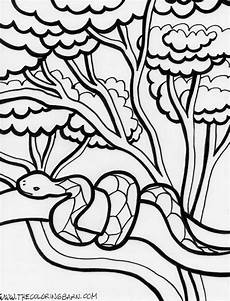 free coloring pages of animals in the rainforest 17397 rainforest coloring page snake coloring pages animal coloring pages jungle coloring pages