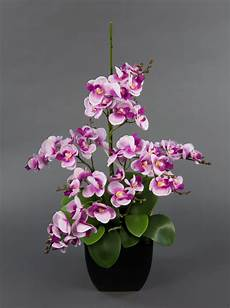 orchideen arrangement rosa pink im schwarzen dekotopf ja
