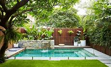 Garden And Pools - what are the best trees for pool landscaping tjs