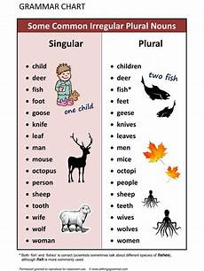 english grammar some common irregular plural nouns allthingsgrammar com plural singular