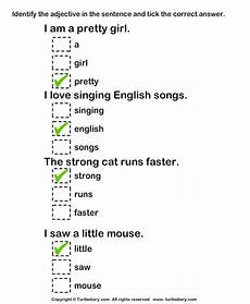 identify adjectives worksheet turtle diary
