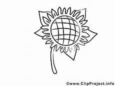 Sonnenblume Malen Nach Zahlen Malvorlage Sonnenblume Malvorlage Zum Malen