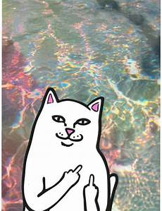 ripndip iphone wallpaper ripndip iphone wallpaper picture all you need to