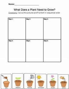 science worksheets about plants for grade 1 12109 2nd grade plants science worksheet by antoinette chow tpt