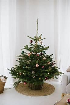 Weihnachtsbaum Von Blume2000 De Und Ein 30 Euro Gutschein